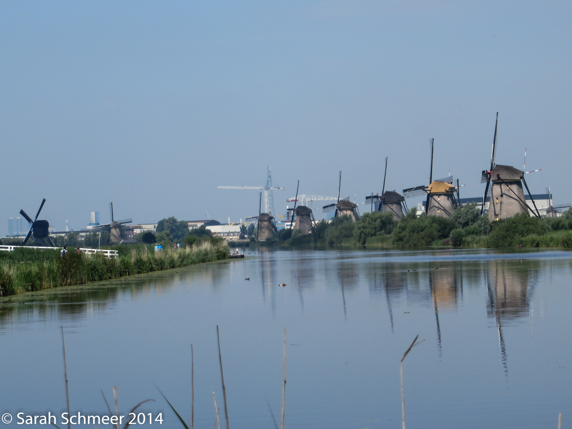Windmills on Kinderdkij, east of Rotterdam
