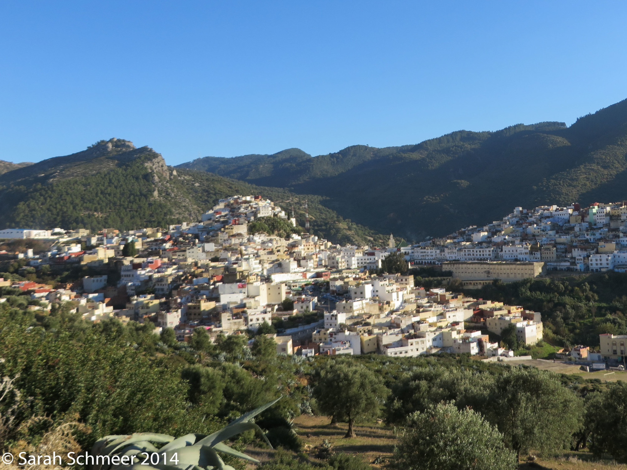 Overlooking the sprawling mountain town of Moulay Idriss, Morocco