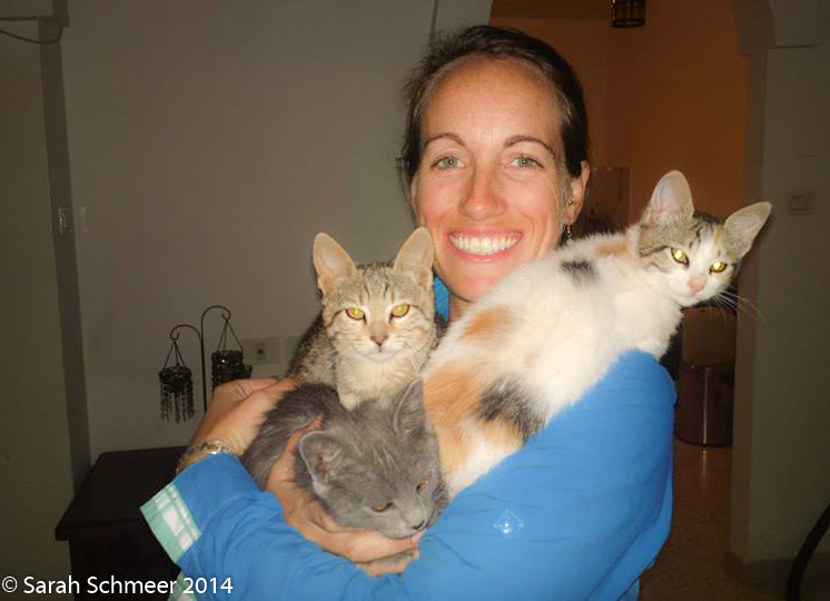 Cuddling kittens in the West Bank.  Say hi to Haram, Halal and Rove.