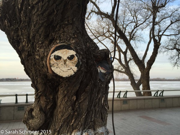 Cute owl street art peeks at passersby along the Songhua River promenade.